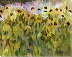 Field of Daisy Flowers Wrapped Canvas Giclee Print Wall Art