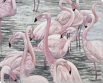 Flamingo Bird Bay Wrapped Canvas Giclee Print Wall Art