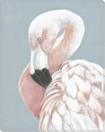 Flamingo Bird Pose Wrapped Canvas Giclee Print Wall Art