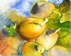 French Pears Wrapped Canvas Giclee Print Wall Art