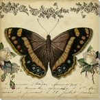 From the Rose Garden Butterfly II Wrapped Canvas Giclee Print