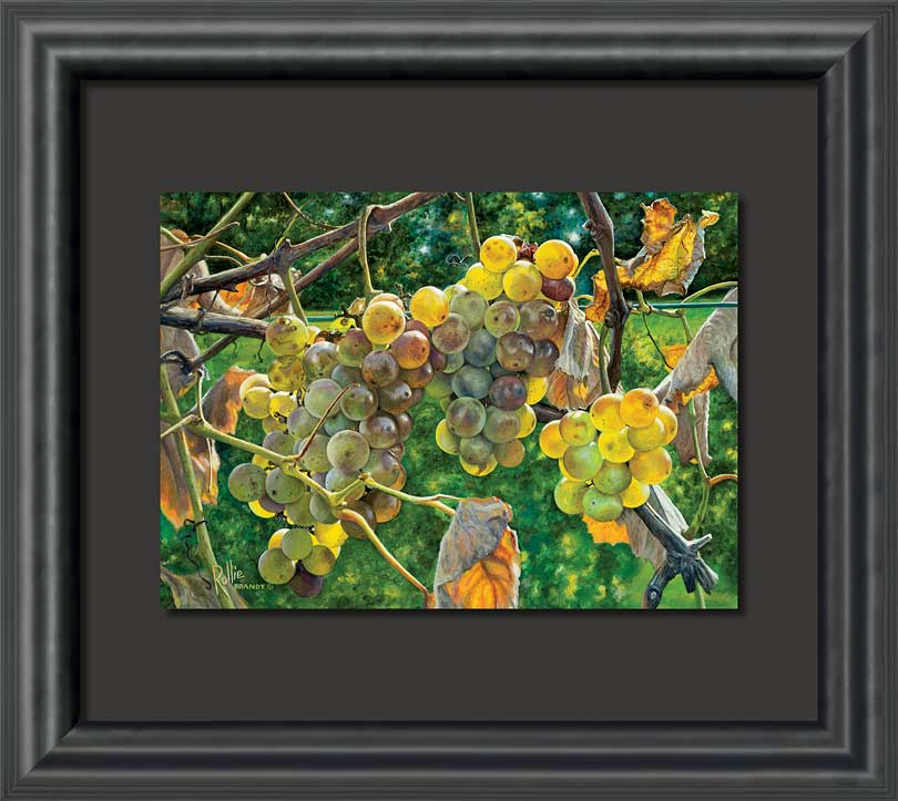 Fruit of the Vine Grapes Float Mount Framed Art Print Wall Art ...