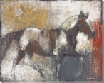 Galloping Pinto Horse Wrapped Canvas Giclee Print Wall Art