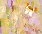 Garden Color Study Butterfly 4 Wrapped Canvas Giclee Print