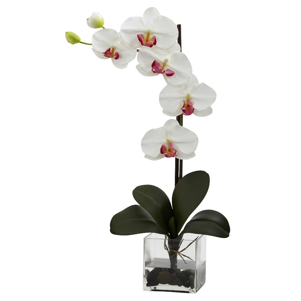 Giant Phalaenopsis White Orchid Silk Flower Arrangement with Vase ...