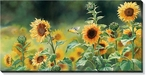 Goldfinch Birds and Sunflowers Wrapped Canvas Giclee Print