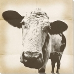Graphic Cow 1 Wrapped Canvas Giclee Print Wall Art
