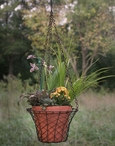 Green Rust Hanging Round Wire Basket with Terra Cotta Pot