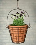 Green Rust Round Hanging Wire Basket with Terra Cotta Pot