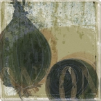 Green Thumb Onion Wrapped Canvas Giclee Print Wall Art