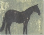 Grey Horse Wrapped Canvas Giclee Print Wall Art