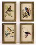Hand Painted Assorted Birds Wooden Framed Wall Plaques, Set of 4
