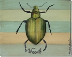 Heart Shaped Weevils Bug Wrapped Canvas Giclee Print Wall Art