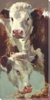 Hef'n Her Cows Wrapped Canvas Giclee Print Wall Art