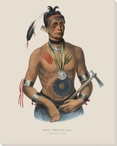 Hoo-Wan-Ne-Ka a Winnebago Chief Native American Canvas Print