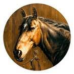 Horse Portrait Round Beverage Coasters by Greg & Company, Set of 12
