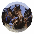Horse Talk Round Beverage Coasters by Diana Madaras, Set of 12