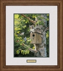 House Sitting Cat and Birds In A Tree Framed Art Print Wall Art