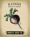 Hurtle Radish Wrapped Canvas Giclee Print Wall Art