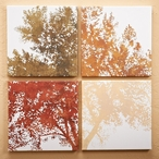 In Bloom Trees Wrapped Canvas Giclee Print Wall Art, Set of 4