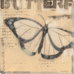 Insect Journal Butterfly I Wrapped Canvas Giclee Print Wall Art