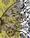 Jarman's Dress Butterfly IV Wrapped Canvas Giclee Print Wall Art