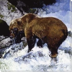 Katmai Cascade Bear in the Water Wrapped Canvas Giclee Print