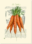 La Carotte Bunch of Carrottes Wrapped Canvas Giclee Print Wall Art