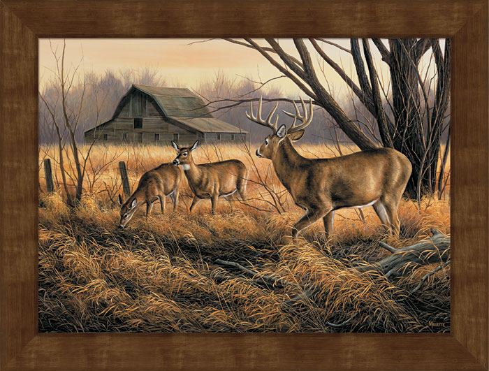 Large abandoned farmstead deer framed canvas art print - Home interior deer pictures for sale ...