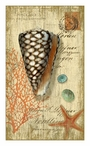 Large Cone Sea Shell Vintage Style Metal Sign