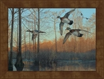 Large Early Morning Wood Ducks Framed Canvas Art Print Wall Art