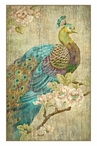Large Peacock Bird Vintage Style Metal Sign