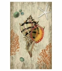 Large Rustic Shell Vintage Style Metal Sign