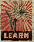 """Learn"" with Flower Wrapped Canvas Giclee Print Wall Art"