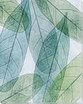 Leaves Intersecting Cool 1 Wrapped Canvas Giclee Print Wall Art