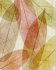 Leaves Intersecting Warm 1 Wrapped Canvas Giclee Print Wall Art