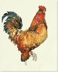 Les Coq Fancy Rooster Bird Wrapped Canvas Giclee Print Wall Art