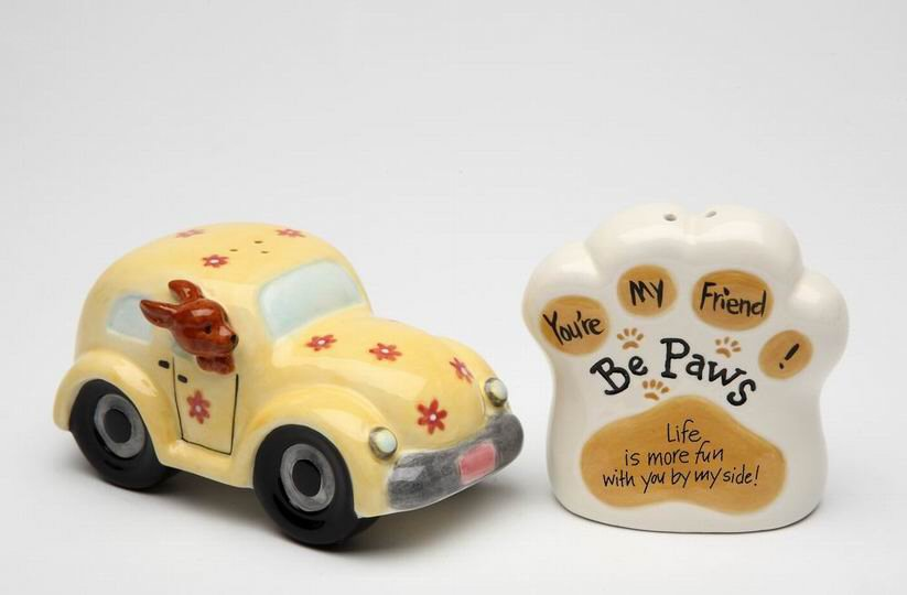 Life Is More Fun With You By My Side Salt And Pepper