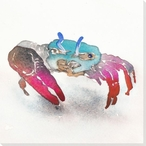 Lil' Crab Wrapped Canvas Giclee Print Wall Art