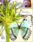 Lilies of the Nile Butterfly 2 Wrapped Canvas Giclee Print
