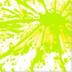 Lime Citrus Burst Wrapped Canvas Giclee Print Wall Art