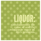 Liquor Absorbent Beverage Coasters by RJ Smart, Set of 12