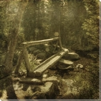 Log Bridge in the Forest Wrapped Canvas Giclee Print Wall Art