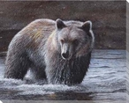 Lone Wader Bear in the Water Wrapped Canvas Giclee Print Wall Art