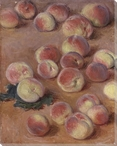 Lots of Peaches Wrapped Canvas Giclee Print Wall Art