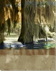 Low Country Trees II Wrapped Canvas Giclee Print Wall Art