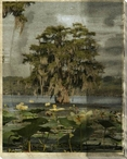 Low Country Trees III Wrapped Canvas Giclee Print Wall Art