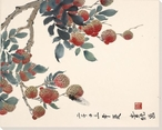 Lychees in the Spring Flowers Wrapped Canvas Giclee Print Wall Art