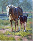 Made in the Shade Horses Wrapped Canvas Giclee Print Wall Art