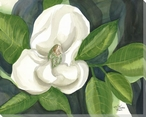 Magnolia Flower on Charcoal Wrapped Canvas Giclee Print Wall Art